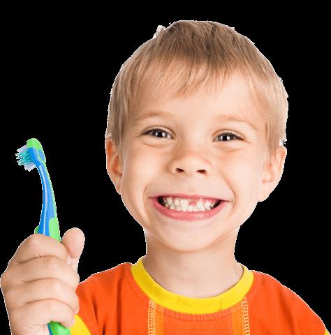 La apariencia de los dientes de leche